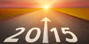 small biz owners new year's resolutions for 2015